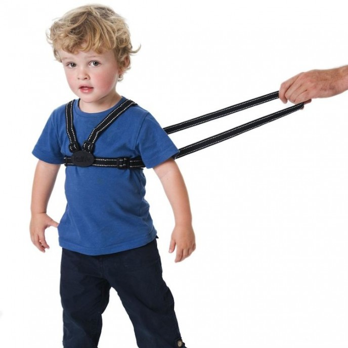 Red Kite Harness and Reins Reflective