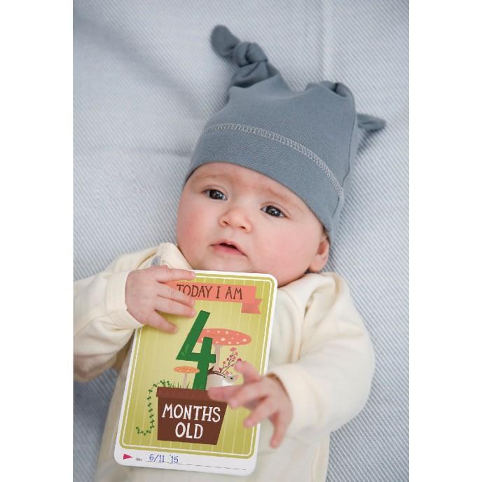 Milestone Baby Cards - The Original